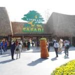 Hút hồn với Vườn thú Vinpearl safari ở Phú Quốc